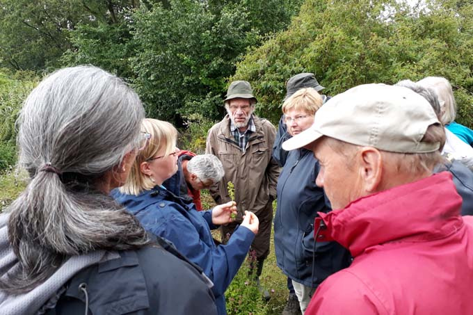 Naturtrainer beim Wildkräuterworkshop - Foto: Michael Schoch