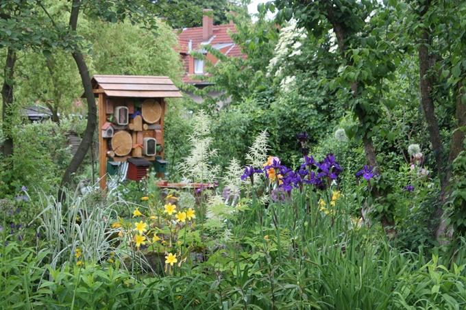 Naturnahe Gärten Schulgärten Und öffentliches Grün Nabu Nrw